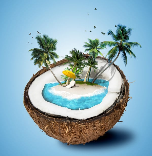 Creative Open Coconut