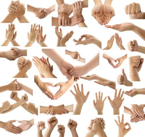 Hand Gesture Variety Collection