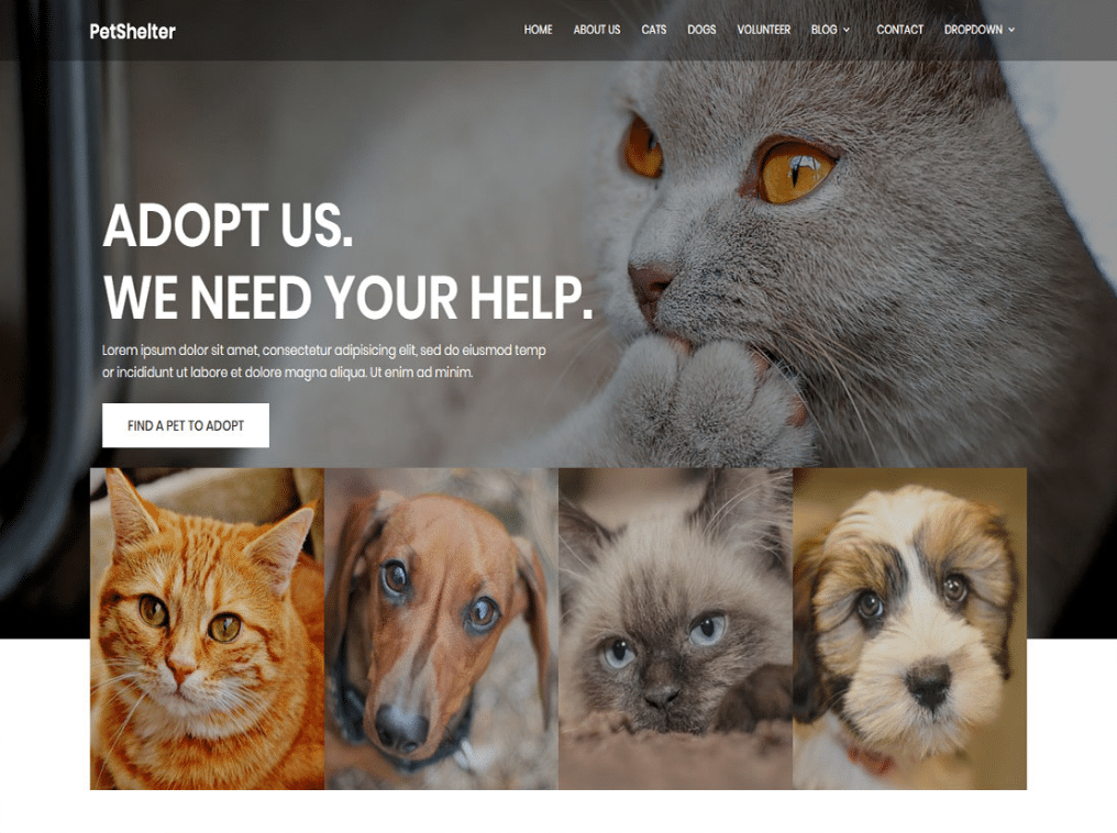 Online Animal Shelter