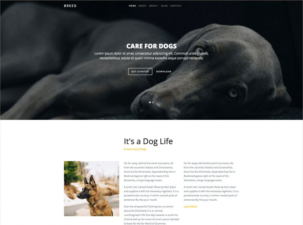 Dog Breeder Website