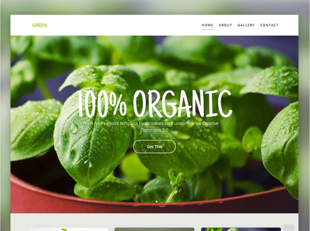 Organic Greenery Store