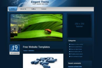 Free Elegant Blog Theme HTML Template