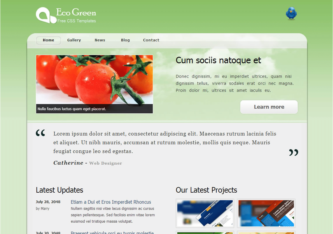 Eco Friendly Website Theme