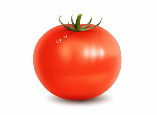 Shiny Tomato Vector
