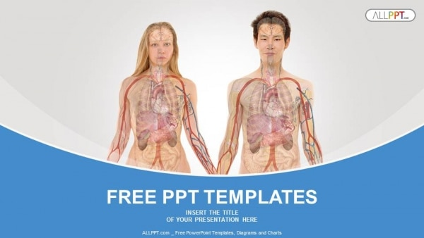 Free Human Anatomy X Ray Powerpoint Template Designhooks