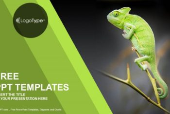 Free Nature Chameleon Habitat Powerpoint Template