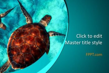 Free Inspiring Sea Turtles Powerpoint Template
