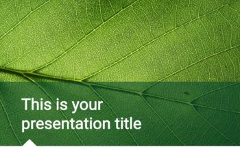 Free Tranquil Nature Slides Powerpoint Template