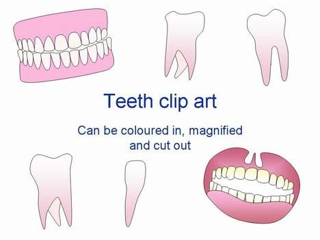 Teeth Art Slides
