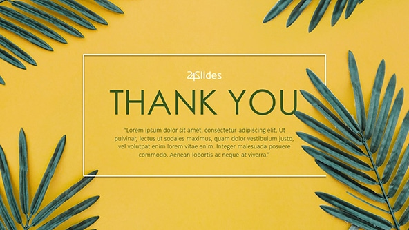 Thank You Slides