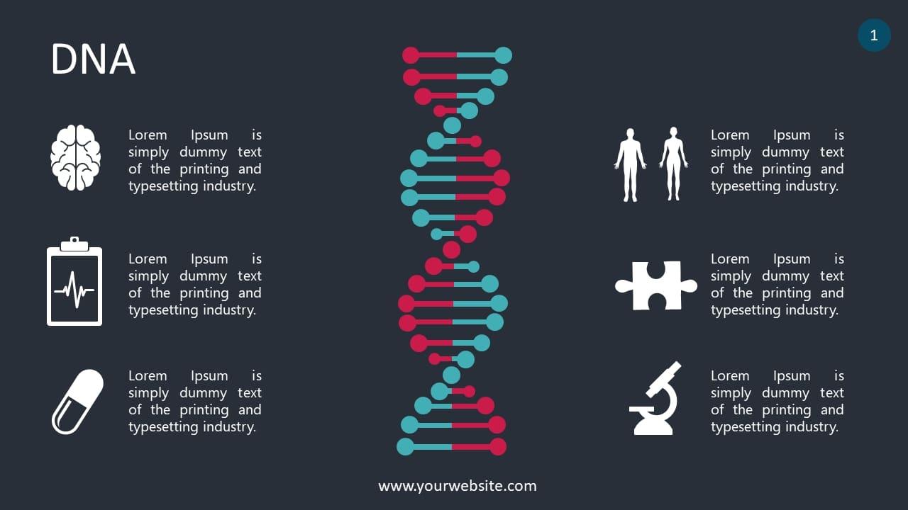 DNA Lesson Infographics