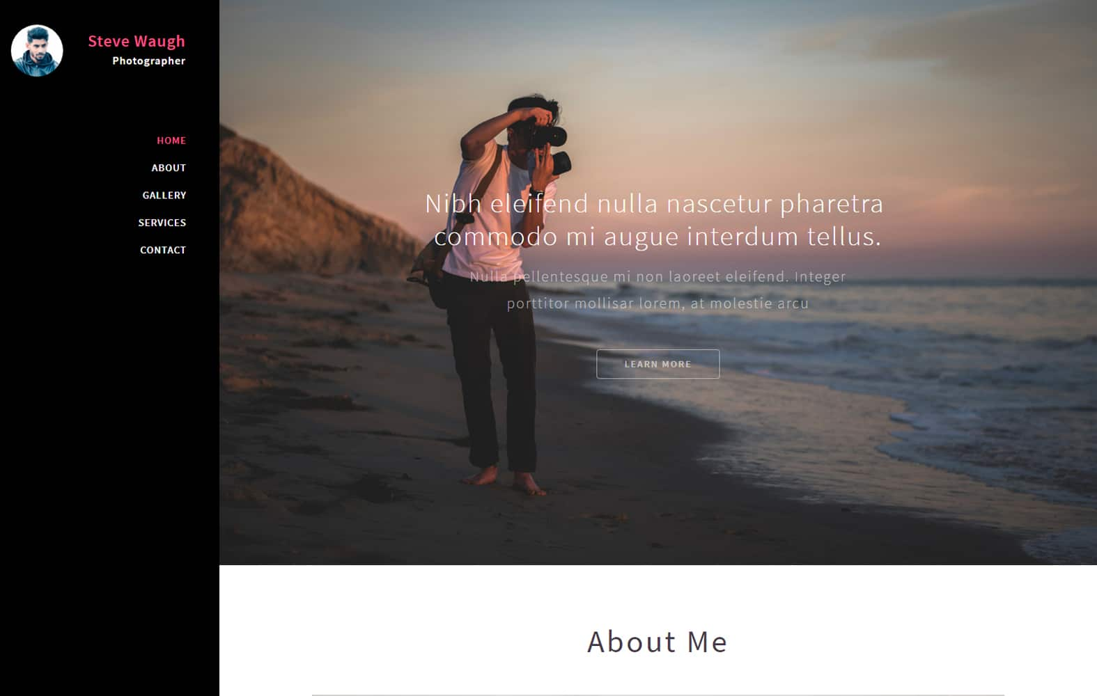 Polaroid - photography category web template