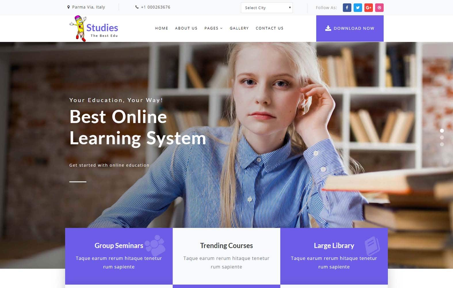Studies - education website template