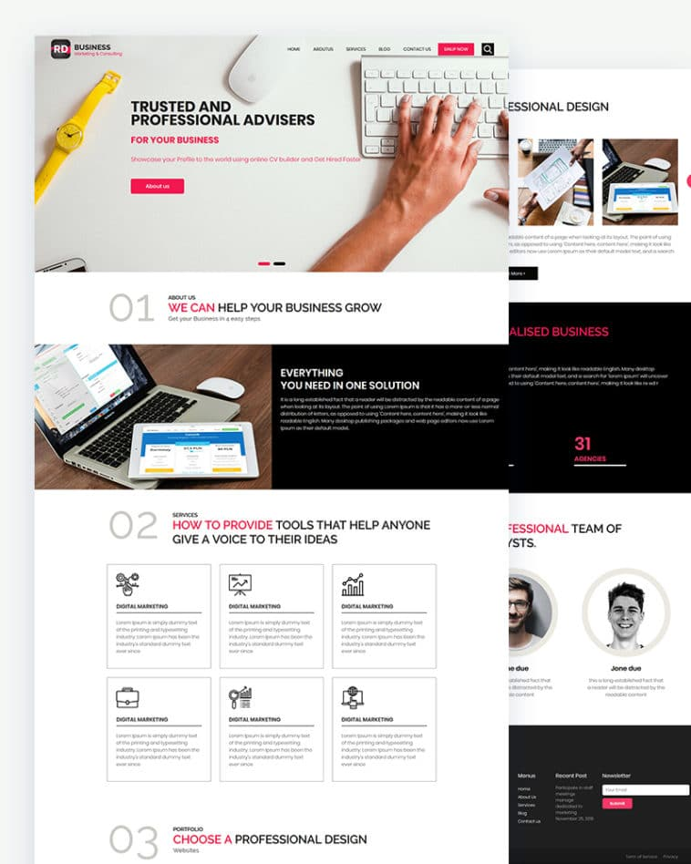 RD- free business consulting website template