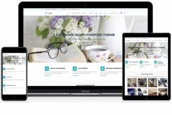 Flash – Free Multipurpose WordPress Theme Download