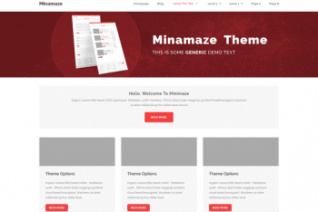 Miniamaze eMagazine WordPress Theme