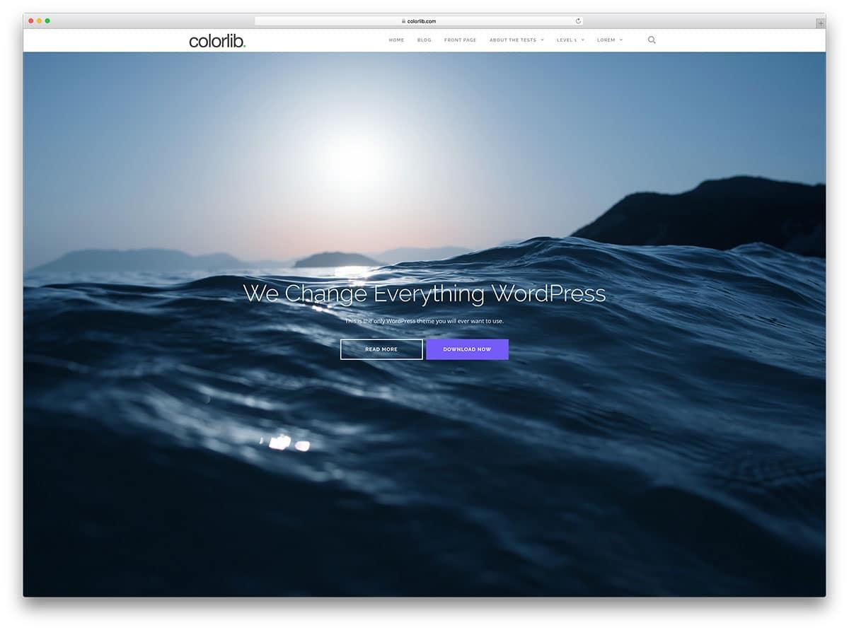 Shapely - responsive WordPress theme