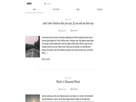Aniki - blog website WordPress theme