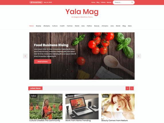 Yala Mag- magazine/news website WordPress theme