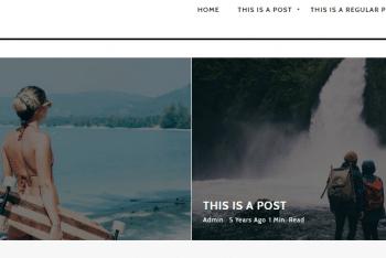 Riba Lite – Blog Websites WordPress Theme