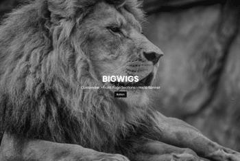 Bigwigs – A Free WordPress Theme