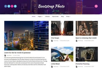 Bootstrap Photo – Free Blog Website WordPress Theme