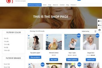 Ecommerce Storefront – Responsive WordPress Theme
