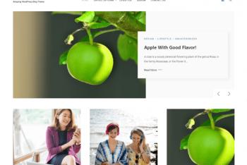 Marpha – Responsive WordPress Blog Theme for Free