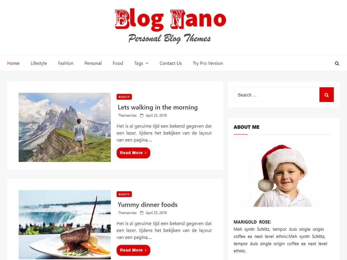 Blog Nano - personal blog WordPress theme