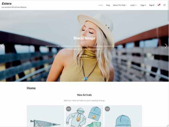 Estera - lightweight multipurpose WordPress theme
