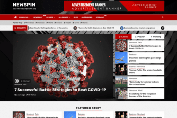Newspin – News Website WordPress Theme for Free