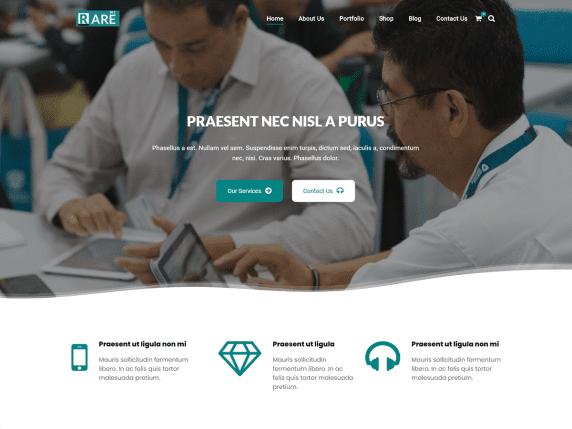RareBiz - minimalist multipurpose WordPress theme