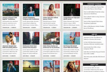 GridMe – Simple WordPress Theme (Free Download)