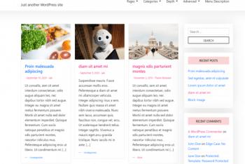 AAK – Lightweight Multipurpose WordPress Theme