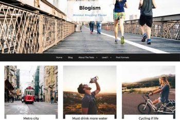 Blogism – Responsive WordPress Blog Theme for Free