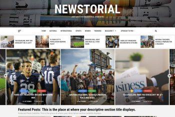 Newstorial – SEO-friendly WordPress Theme for Free