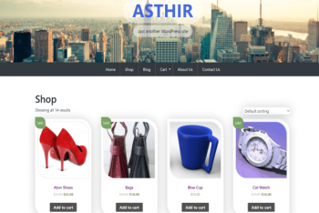 Asthir – Ecommerce & Blogging WordPress Theme for Free