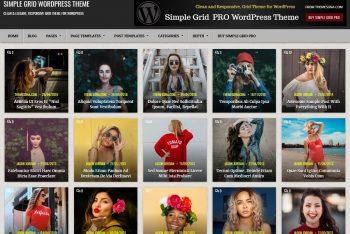 Simple Grid – Multipurpose WordPress Theme for Free