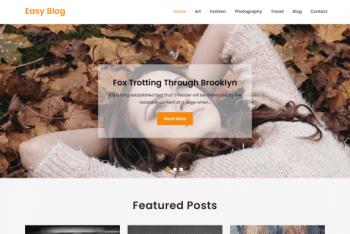 Easy Blog – Free WordPress Blog Theme