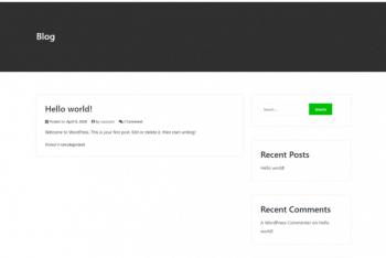 Starter – Free WooCommerce-ready WordPress Theme