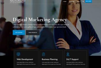 Bizberg Consulting Dark – Free Business Consulting WordPress Theme
