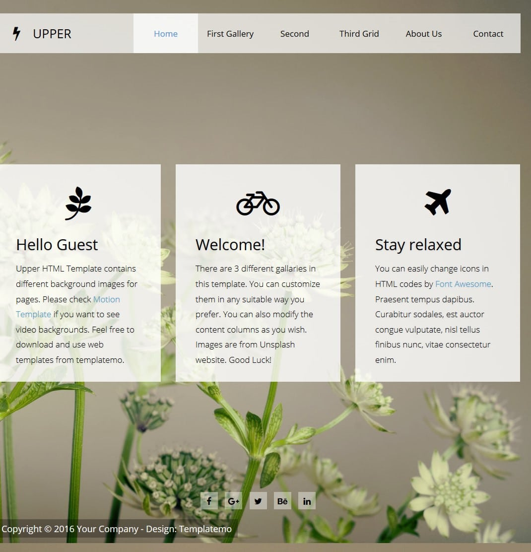 free-responsive-html-template