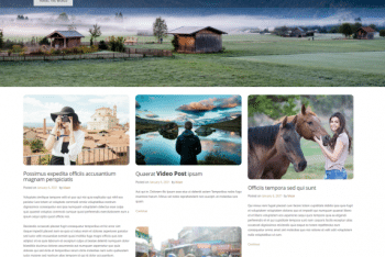 Blog Life – Free WordPress Theme for Blog Websites
